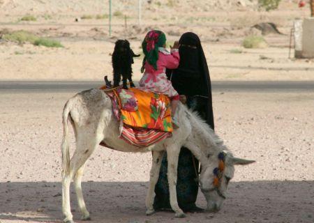 Bettelnde Mutter mit Kind, Esel und Ziege.