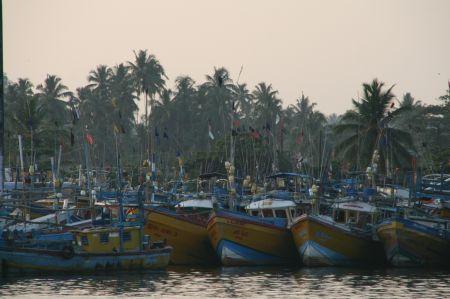 Im Hafen gibt es eine riesige Fischereiflotte und ....