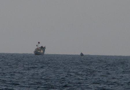 Dieses Boot entpuppte sich dann als ungefaehrliches Fischerboot aber - jedes Mal aus Vorsicht ist zusammenruecken angesagt