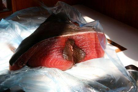 .... Stück. In den nächsten Tag gibt es Thunfisch in den verschiedensten Variation. Zuerst als Tartar - nicht zu übertreffen. Frischer geht es nicht.