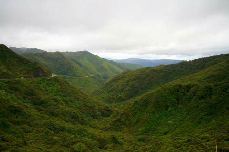 Von Wellington geht die Reise Richtung Norden nach Napier durch grüne Berge