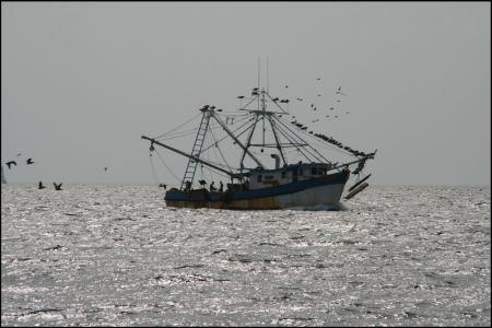 1-fischerboot.jpg