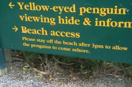 Wieder ein Hinweisschild auf Pinguine .....