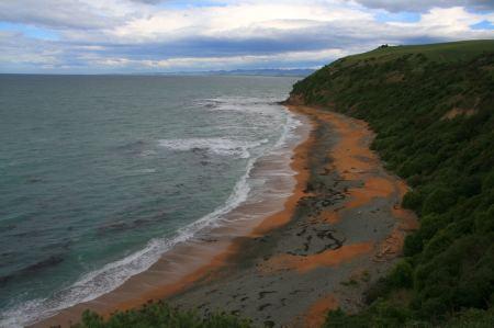 .... schöner Strand aber keine Pinguine zu sehen. Langsam geben wir die Hoffnung auf.