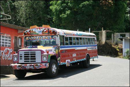 10-bus.jpg