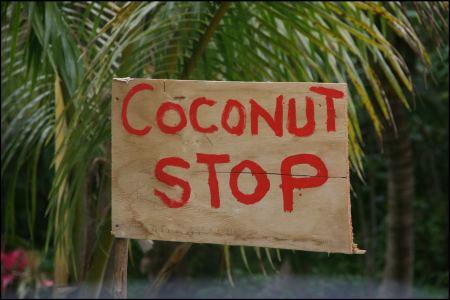 10-stop-coconut.jpg