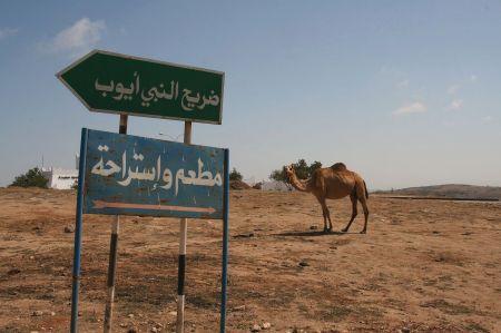 Wohin geht es hierr? Die Straßenschilder sind in arabischen Schriftzeichen.
