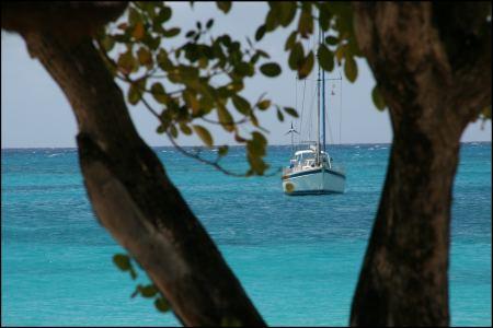 2-sola-vor-anker-auf-palm-island.jpg