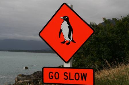 20-achtung-pinguine