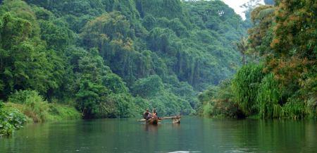 Der Napkoa schlängelt sich durch einen Urwald von Grün.