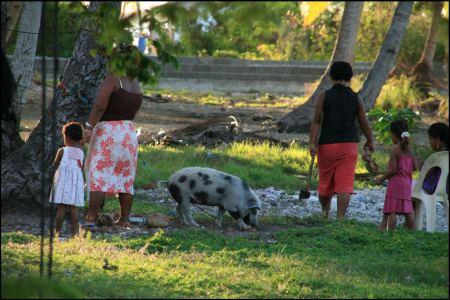 3-familienidylle-mit-schwein.jpg