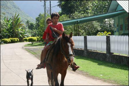 3-kinder-auf-pferd.jpg