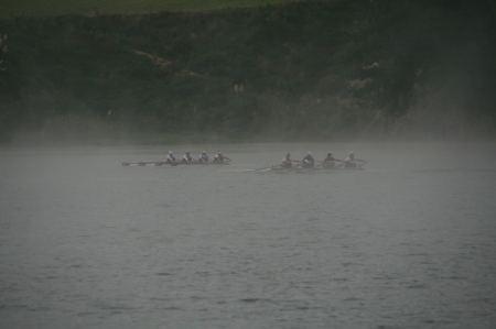 Im frühen Morgendunst rauschen Ruderboote an uns vorbei.