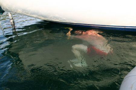 Während der Fahrt hatten wir immer den Eindruck, dass das die Bootsschraube ein bisschen vibriert. Jaap läßt das keine Ruhe und seine Kontrolle der Schraube lohnt sich.....