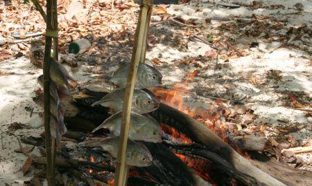 """Die Ã""""ste mit dem Fisch werden neben dem Feuer in den Boden gesteckt und so ..."""