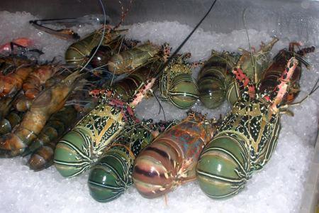 Angebote am Straßenrand - Meeresfrüchte.