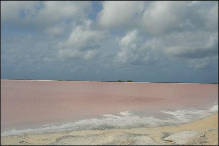 8-rosa-salzsee.jpg