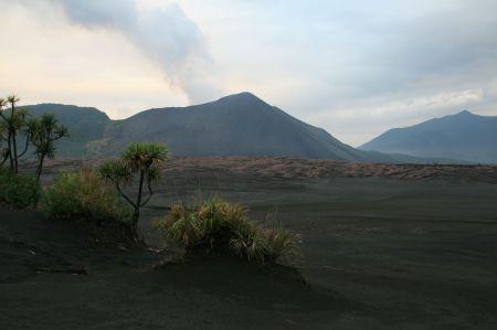 Die Landschaft um den Vulkan wird immer karger, je näher man kommt.