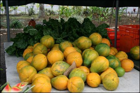markt-fruchte.jpg