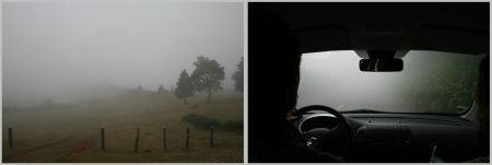 nebel-pan.jpg