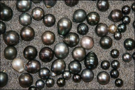 schwarze-perlen-1.jpg