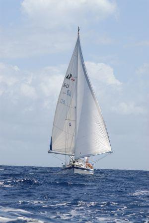 ..... und auf See vor den ABC Inseln